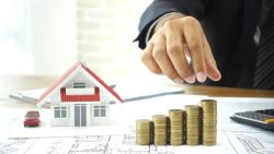 Specialises in Property Development And Investment