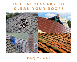 Is it necessary to clean your roof?