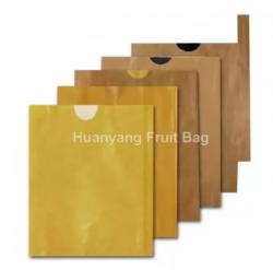 Yellow Mango Protection Bags