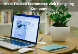 Most Trusted Ecommerce Web Designing Company