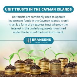 Expert Counsel for Cayman Trusts and Foundation Companies – Bransens
