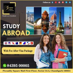 Plan Your Study Visa Abroad With Us