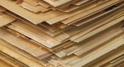 Commercial Plywood | DURBI