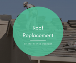 Heavily Damaged Roof? Replace It ASAP