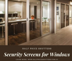 Security Screen for windows