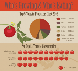 Rate of Growing and Consuming Tomato | John Deschauer