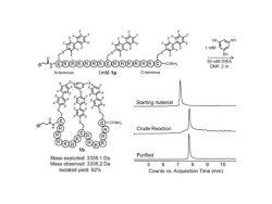 Neisseria gonorrhoea Antibodies and Antigens