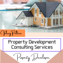 Valery Peltier – When to Hire Property Developers and Consultants?