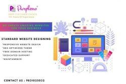 Standard Website Designing