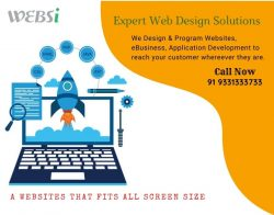 Expert Web Design Solution
