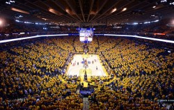 OracleArena
