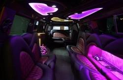 lansing limousine