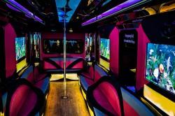 charleston limo