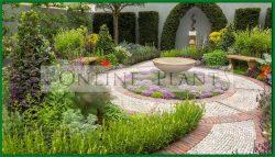 Garden Design/Consultation Australia wide