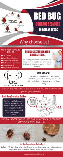 Bed Bug Control Services in Dallas Texas