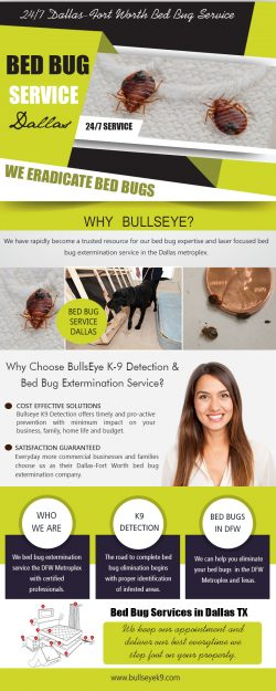 Bed Bug Service Dallas