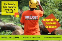 Roswell tree removal company