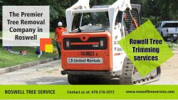 Rowell Tree trimming services